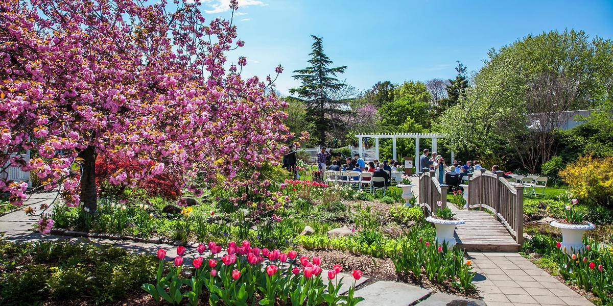 Queens Botanical Garden wedding Queens