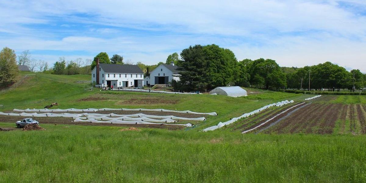 Wright Locke Farm wedding North Shore