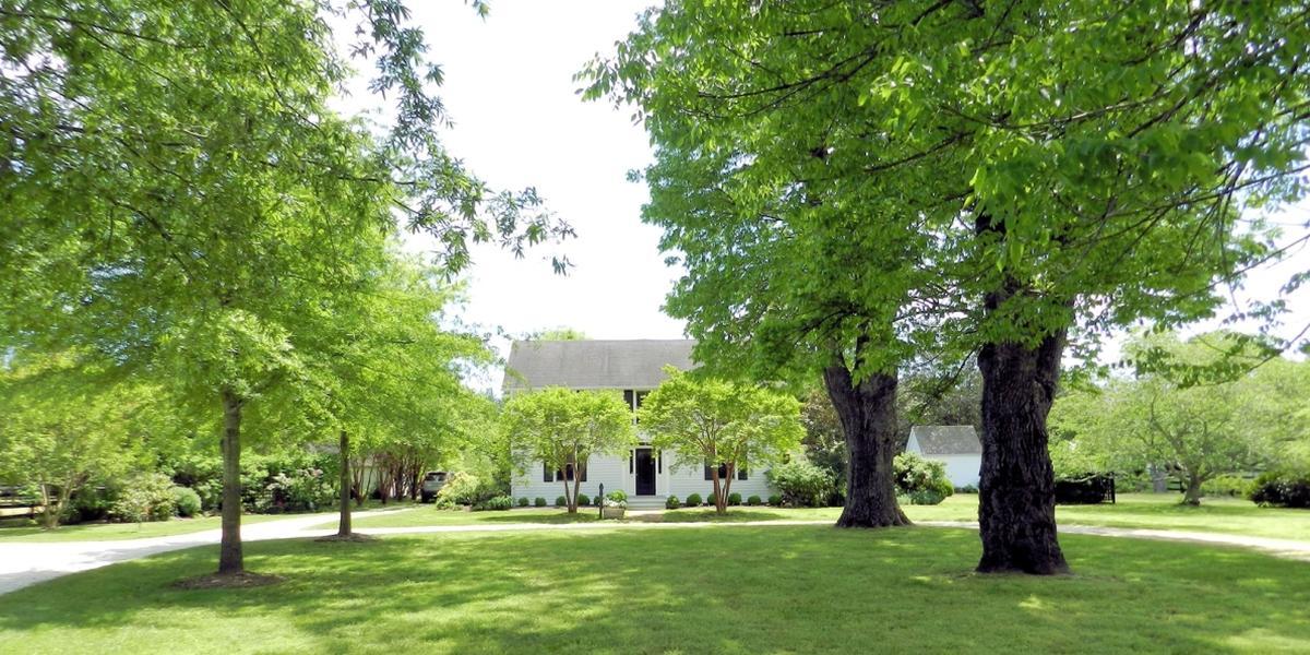 Green Valley Farm wedding Virginia Beach