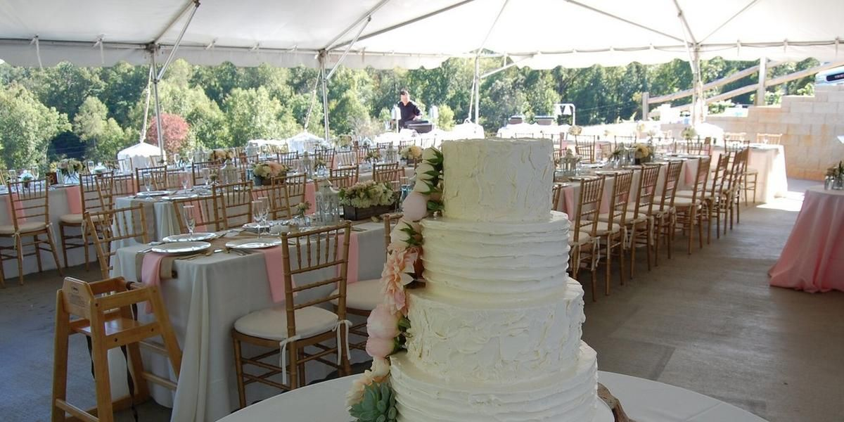 Addison Farms Vineyard wedding Asheville
