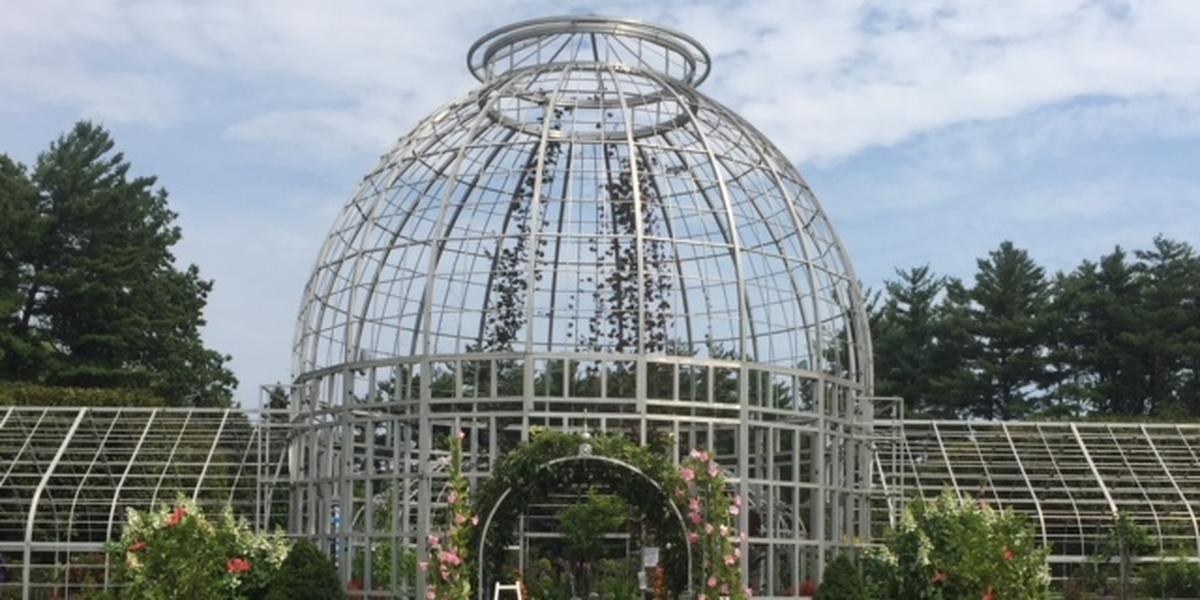 Taylor Conservatory & Botanical Gardens wedding Detroit