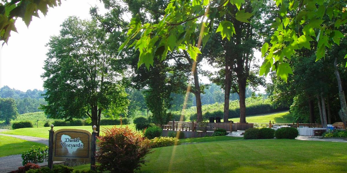 Daniel Vineyards wedding West Virginia