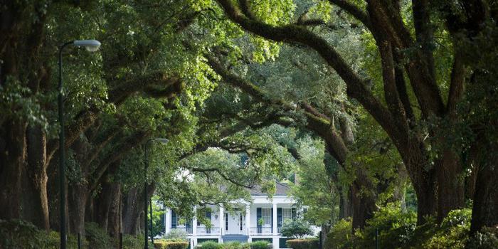 Stewartfield  wedding Southern Alabama