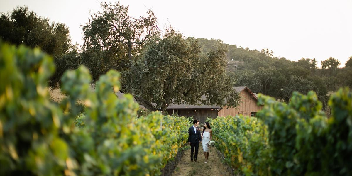 Zaca Mesa Winery wedding Santa Barbara