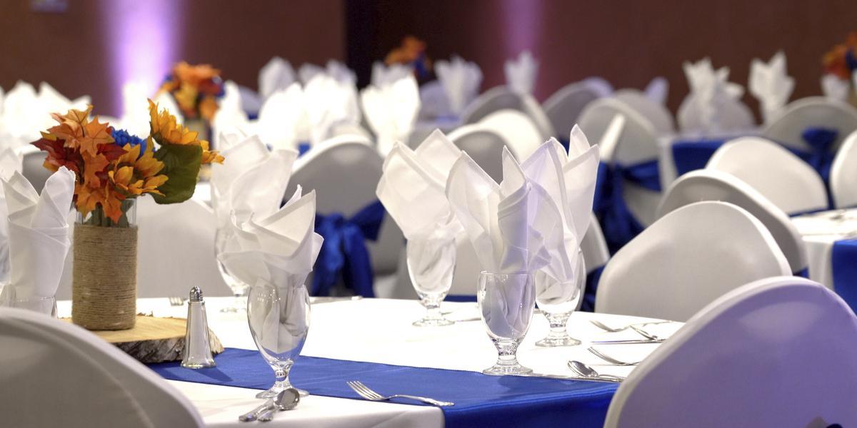 Holiday Inn Dubuque/Galena wedding Sioux City
