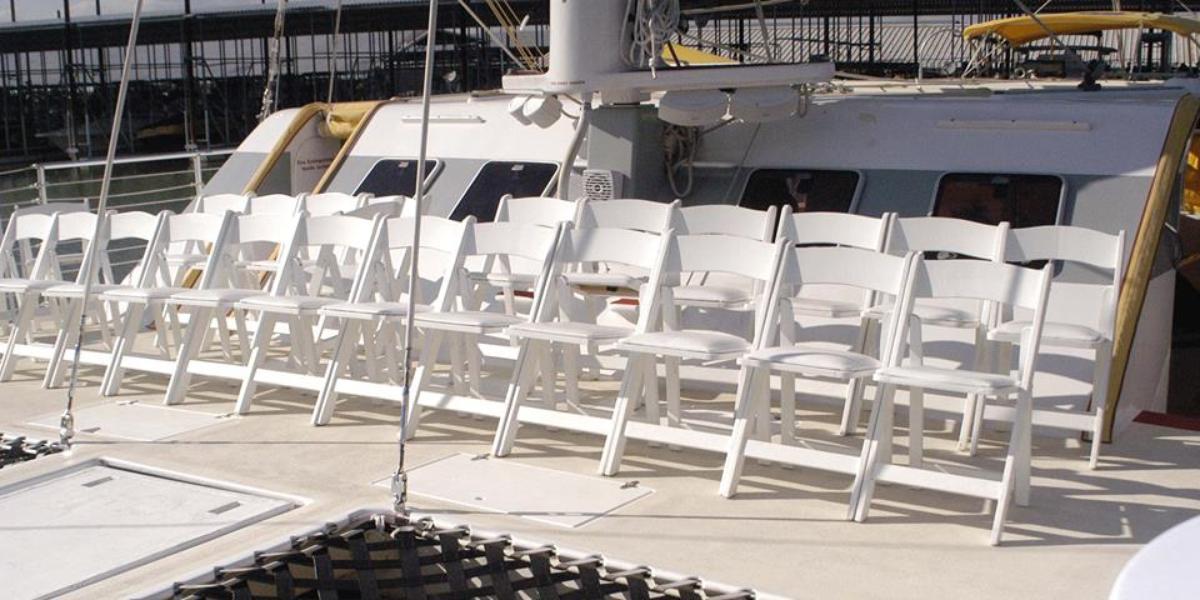 Big D Cats wedding Dallas
