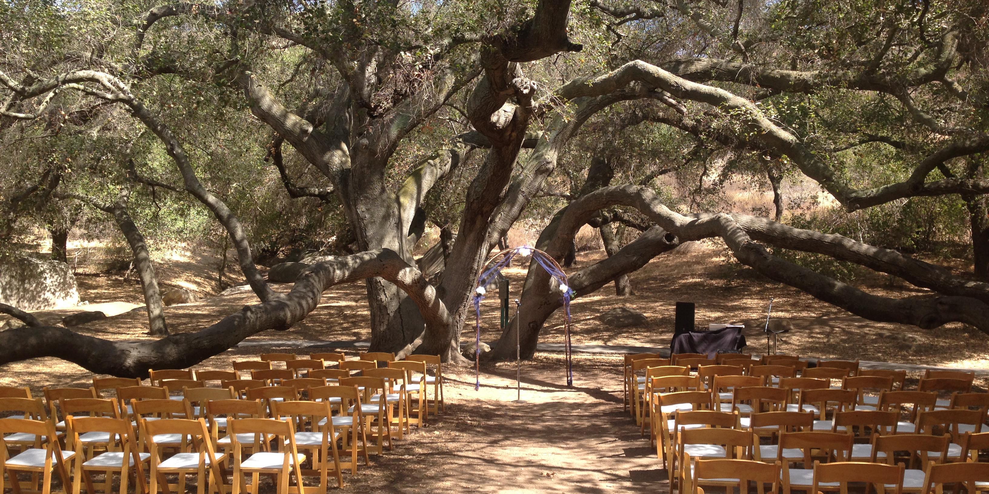 Louis A. Stelzer County Park wedding San Diego