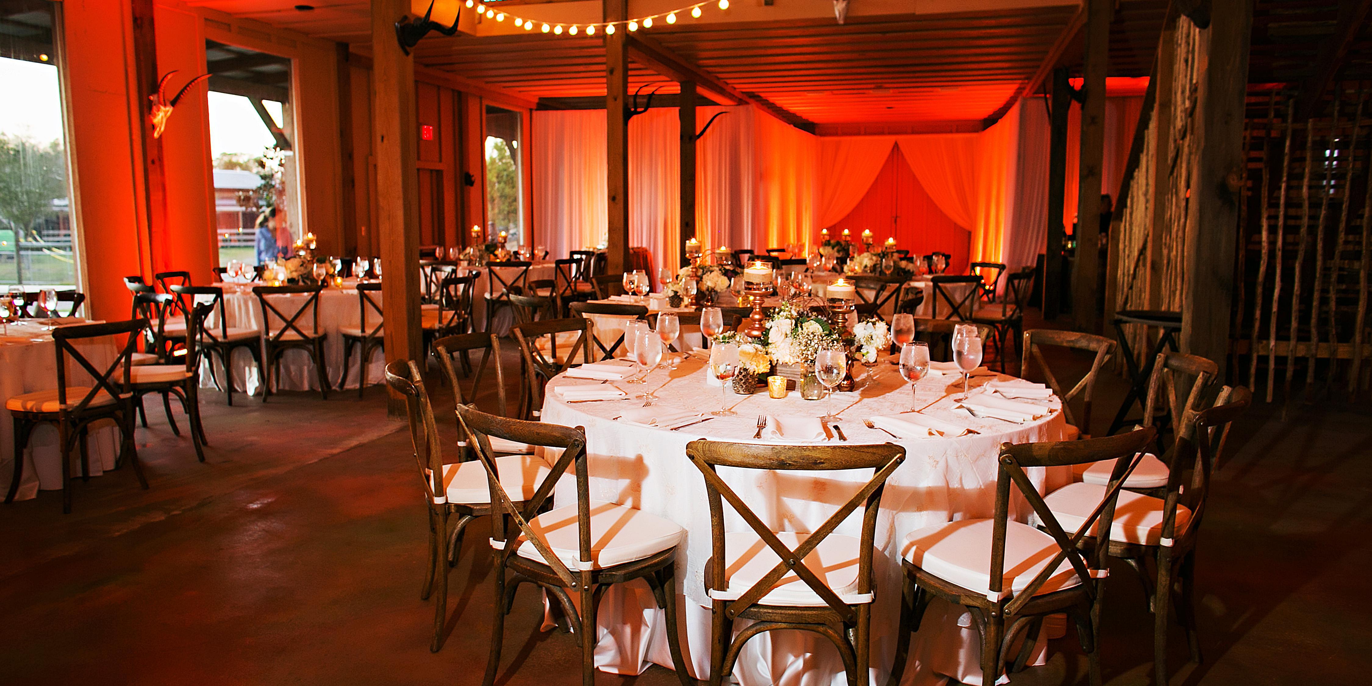 Safari Wilderness wedding Tampa