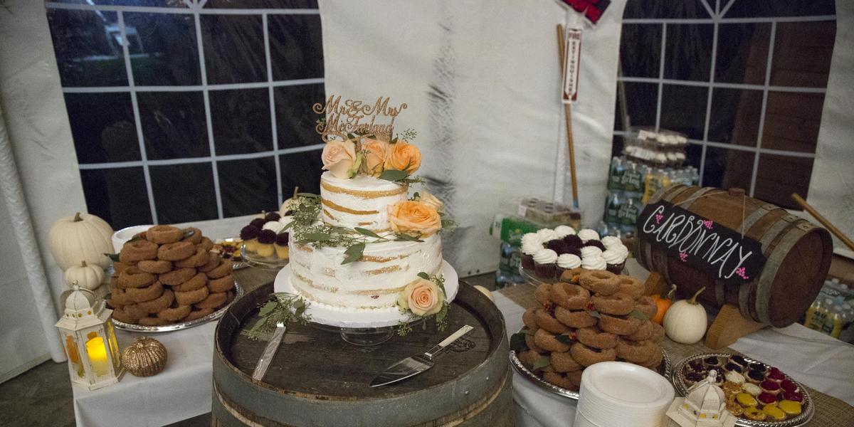 Zugibe Vineyards wedding Finger Lakes